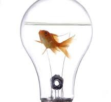 innovacion-1