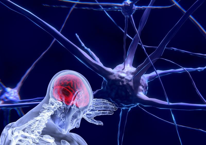 neurons-3743011_1280