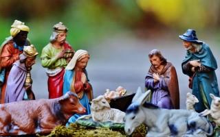 christmas-crib-800
