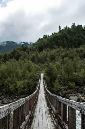 Puente colgante en el Parque