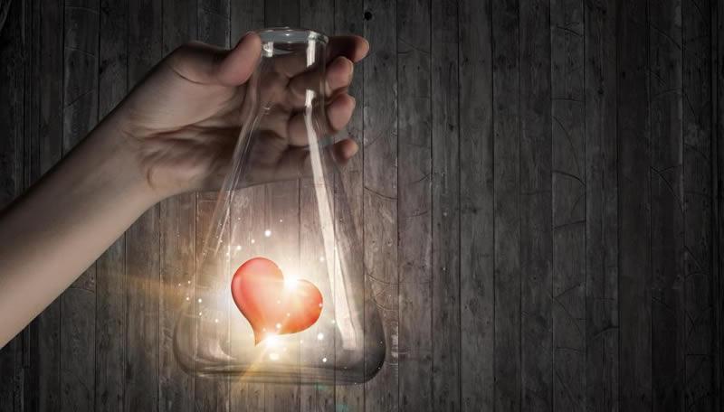 diez-datos-cientificos-comprueban-amor-salud-bienestar-phronesis-arte-de-saber-vivir