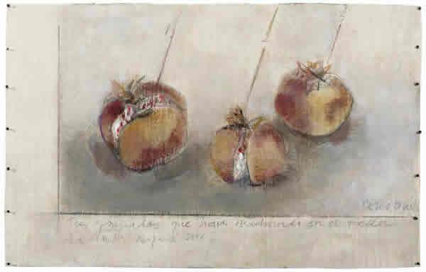 Roser Bru. Tres granadas que han madurado en el taller, 2005